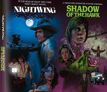 Nightwing ve Hawk'ın Gölgesi – Film Haberleri |  Film-News.co.uk